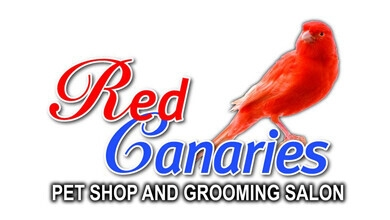 RED Canaries Logo