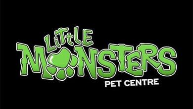 Little Monsters Logo